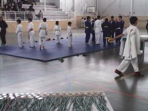 judo mayo 2016w