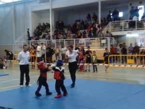 torneo kick mayo 2016w6